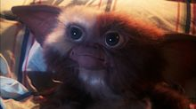 Young Gizmo will be the star of new 'Gremlins' animated prequel series