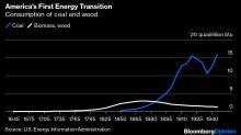 El covid es un gran golpe para la energía limpia: M. O'Sullivan