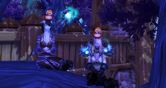 Meet Pepe, your feathered garrison pal