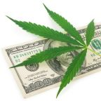 Better Buy: Aurora Cannabis Inc. vs. Canopy Growth Corporation