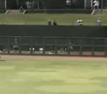 D-Backs outfield prospect allows home run after pulling a Jose Canseco