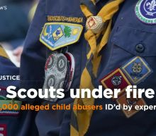 Nearly 8,000 alleged child abusers within Boy Scouts of America ID'd by expert