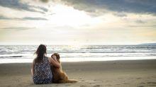 Frau schreibt herzerwärmenden Nachruf für einen Hund