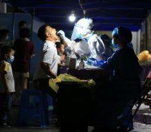 China reports 34 new coronavirus cases on June 12