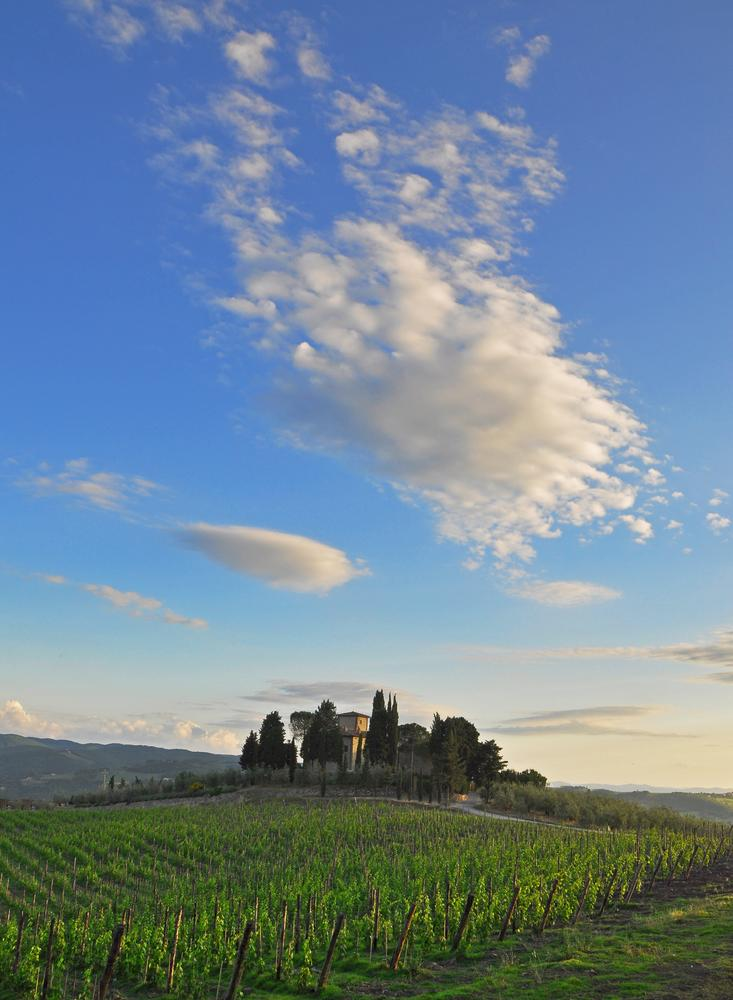 Wine lovers celebrate Italy's iconic wine in Greve in Chianti