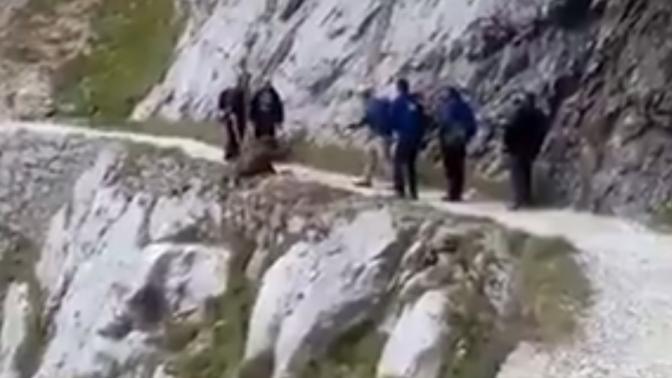 Un grupo de senderistas despeña así a un jabalí