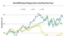 PEG Stock Compared to Its Peers in the Past Year