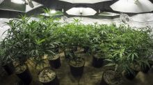 Weekly Cannabis Stock News: CannTrust Gets Busted