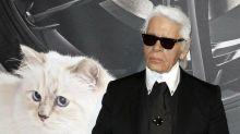 Karl Lagerfelds Katze Choupette wirbt für Münchner Start-up