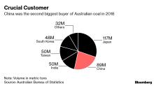 China Said to Slow Australian Coal Imports as Beijing Denies Ban