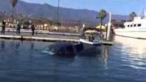 Pickup Truck Sinks Into Santa Barbara Harbor With Driver Inside