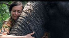 The woman trying to save India's tortured temple elephants