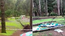 Baby in serious condition after tree topples onto family's tent