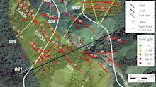 FenixOro Extends Known Strike Length of Main Vein Family to 1400m, Intercepts Additional High Grade Gold
