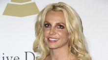 Britney Spears Would Not Dance With A Giant Burmese Python Again