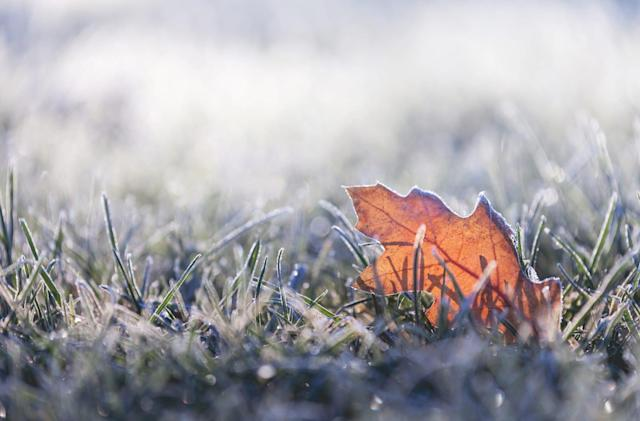 NOAA: US snow cover hits an 'all-time low' for November