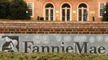 Fannie Mae net income falls, seen paying $3.4 billion to U.S. Treasury