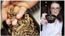 The Sydney bar selling bowl of bugs instead of nuts