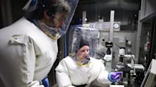 Only a quarter of the 59 labs that handle the world's deadliest pathogens have top-level biosecurity, experts warn. They fear lax rules could lead to another pandemic.