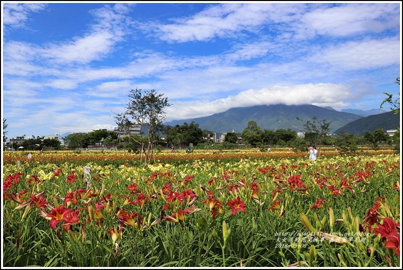 嘉德萱草園-2018-05-04.jpg
