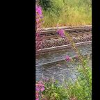 Flash flooding cancels nearly 200 train services in Scotland