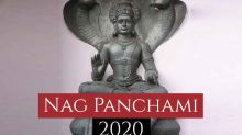 Nag Panchami 2020: Things You Need To Do And Avoid Doing On This Day