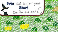 Sheet the Ghost Is Lost Among the Rabbits. Can You Help His Owner Find Him?
