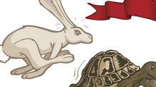 Wanda's Bunny Run Stumbles