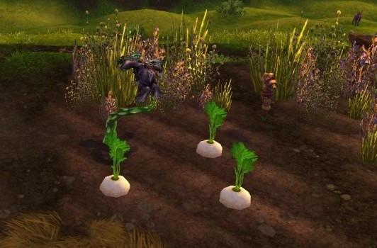 What you should plant on your Tiller's farm