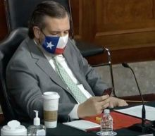 'Zero respect': Ted Cruz pictured scrolling through phone during harrowing opening testimony into Capitol riot