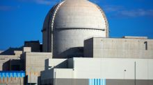 UAE starts up first Arab nuclear plant