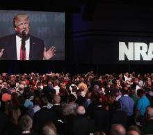 Donald Trump tells NRA: 'I am going to come through for you'
