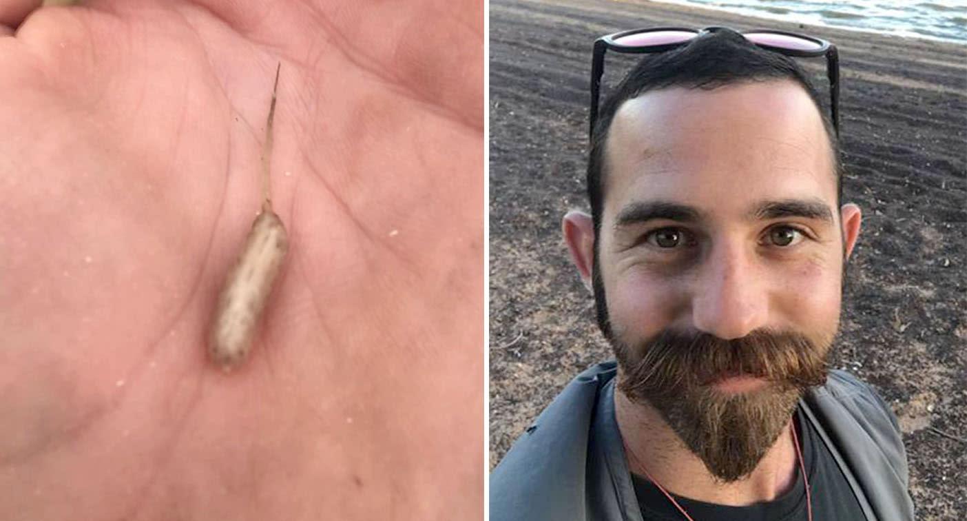 Backpacker finds 'alien-like' creature near Aussie lake