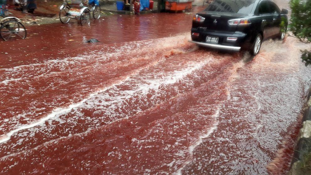 Heavy Rains and Eid Animal Sacrifices Create Rivers of Blood in Dhaka, Bangladesh