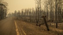 How Canadians can help with the Australian bushfires