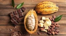 Buy cocoa, not crypto — the case for investing in commodities in 2021