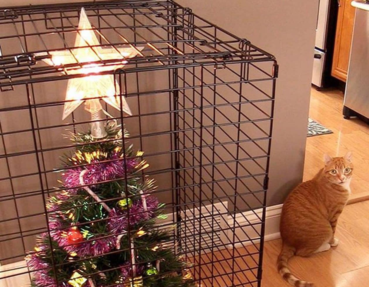 catproof 10 lustige ideen wie tierbesitzer ihren weihnachtsbaum vor fellnasen sch tzen. Black Bedroom Furniture Sets. Home Design Ideas