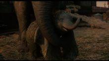 El nuevo tráiler de Dumbo sigue prometiendo un reboot mágico