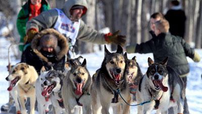 Iditarod Kicks Off With Festive Ceremonial Start