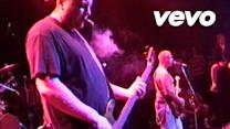 Badfish (Live At The Palace/1995)
