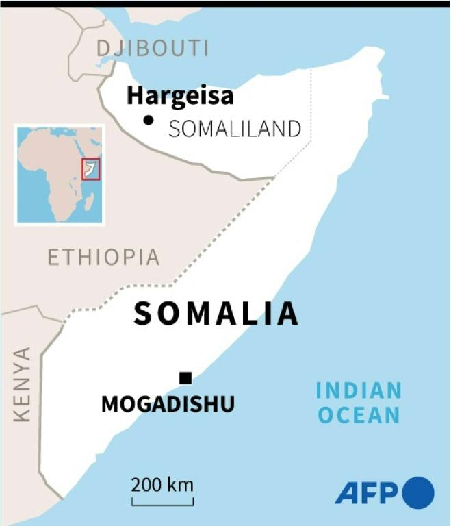 Somaliland opposition joins forces to grab control of parliament