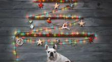 Weihnachten ohne echten Baum: 10 kreative Alternativen