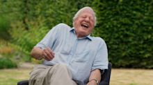 David Attenborough: A Life On Our Planet: Clip - Tattoo