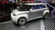 Nuova Fiat Panda, la piccola italiana darà vita a 4 differenti modelli