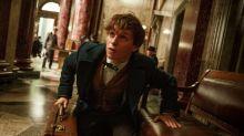 Eddie Redmayne's Newt Scamander may not lead all Fantastic Beasts movies