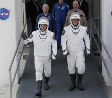NASA and SpaceX's launch was postponed, but at least we got to see their wildly corny spacesuits