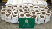Hong Kong shops defy ban on trade in pangolin scales