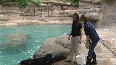 Zoo Tour Offers Hands-On Experience For Fee