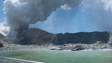 Tourist photos capture dramatic aftermath of New Zealand volcanic eruption