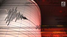 Gempa Magnitudo 5,8 Guncang Jayapura